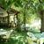 Park Hotel Oasis , Nessebar, Black Sea Coast, Bulgaria - Image 7