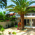 Esperia Hotel , Laganas, Zante, Greek Islands - Image 6