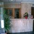 Palm Court Apartments , Benidorm, Costa Blanca, Spain - Image 11